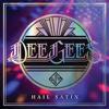 Dee Gees Hail Satin Foo Fighters Live - Foo Fighters