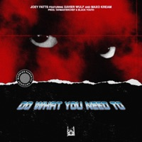 Do What You Need To (feat. Xavier Wulf & Maxo Kream) - Single Mp3 Download
