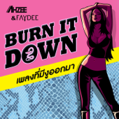 Burn It Down (Extended Mix)