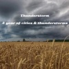 A Year of Cities & Thunderstorms