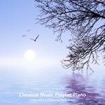 Classical Music Playlist Piano: 14 Beautiful and Relaxing Piano Pieces