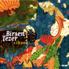 Birsen Tezer - Cihan artwork