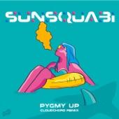 Sunsquabi - Pygmy Up (feat. Russ Liquid)
