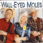 Wall-Eyed Moles - The Bandit Joaquin