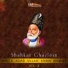 Shahkar Ghazlein, Vol. 2