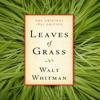Walt Whitman & American Renaissance Books - Leaves of Grass: The Original 1855 Edition (Unabridged)  artwork