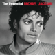 Michael Jackson - Heal the World MP3