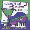 Essential Collection 2 - 17 Top Hits Chilled & Stirred