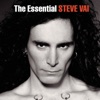 The Essential Steve Vai ジャケット写真