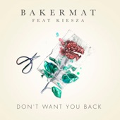 Don't Want You Back (feat. Kiesza) - Single