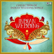 Collection of Indian Wedding Songs: Indian Wedding - Various Artists - Various Artists