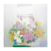 ヨルシカ - 夏草が邪魔をする artwork