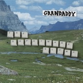 Grandaddy - Broken Household Appliance National Forest