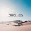 Antoine Bradford - Promises (feat. Sienna Bradford) artwork