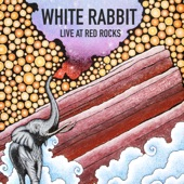 Elephant Revival - White Rabbit