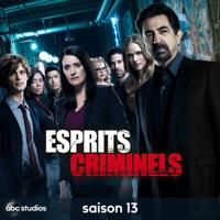 Télécharger Esprits Criminels, Saison 13 Episode 22