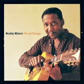 Muddy Waters - Can't Get No Grindin' (What's The Matter With The Meal)