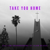 Take You Home (feat. Aloe Blacc) - Single