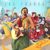 Raghu Dixit - Jag Changa artwork