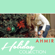 This Is Me (Holiday Version) - Ahmir