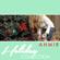 The First Noel - Ahmir