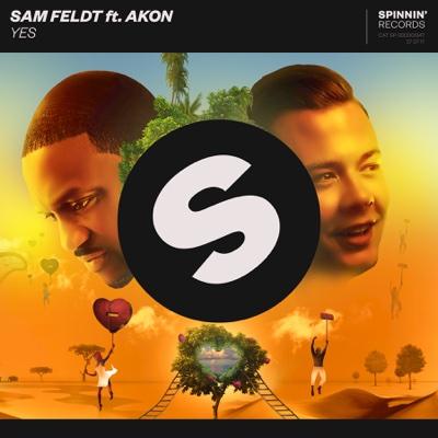 Yes (feat. Akon) - Sam Feldt song