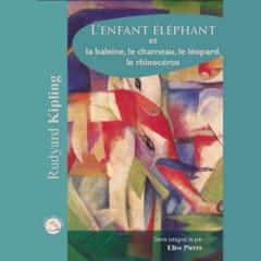 L'enfant éléphant et la baleine, le chameau, le léopard, le rhinocéros