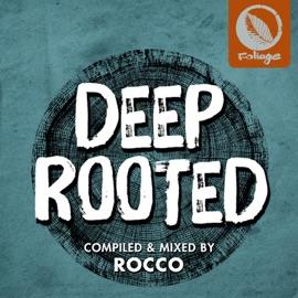 I Love The Night Louie Vega Roots Mix