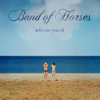 Band of Horses - Why Are You OK artwork