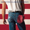 Bruce Springsteen - I'm Goin' Down artwork