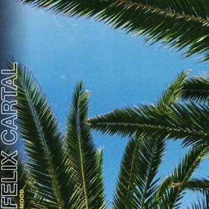Mood (Felix Cartal's Late Night Mood Mix) - Single