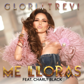Me Lloras (feat. Charly Black)-Gloria Trevi