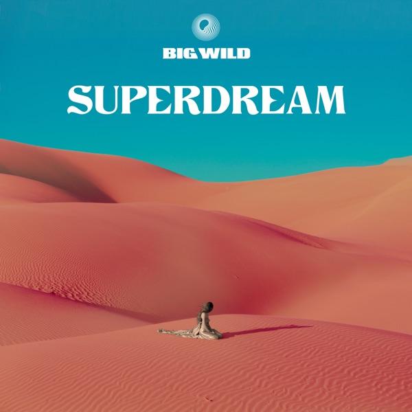 Big Wild - City of Sound song lyrics