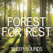 Forest for Rest