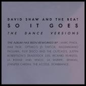 David Shaw and The Beat - Sentiment Acide (Jennifer Cardini Remix)