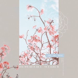 The Album (Remixes) - Single Mp3 Download
