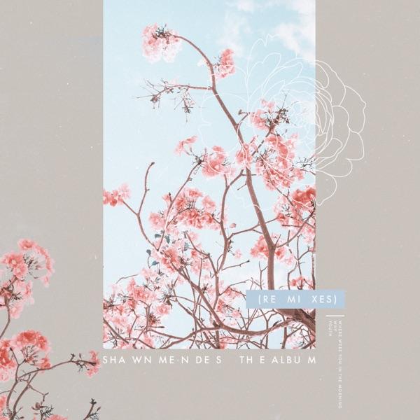 The Album (Remixes) - Single