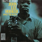 John Lee Hooker - Come On and See About Me