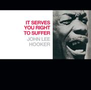 Shake It Baby - John Lee Hooker