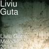 Liviu Guta Melodii 2018, Liviu Guta