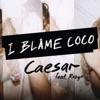 I Blame Coco