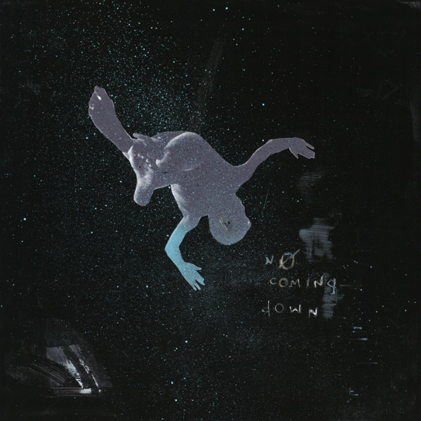 No Coming Down (feat. Alex Wiley & Sky Montique) - Single