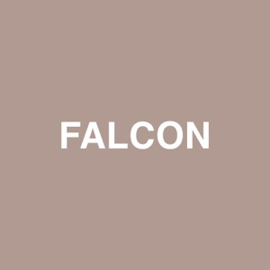 Falcon (feat. Raury) - Single Mp3 Download
