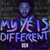 OSH - My Yé Is Different artwork