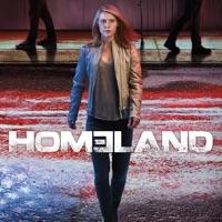 Homeland, Season 6