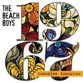 Beach Boys - Surfer Girl (1967 A Cappella Mix)