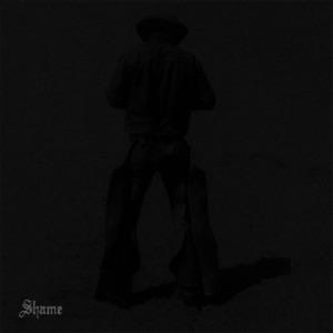 Lukas Frank - Shame feat. Phoebe Bridgers