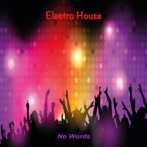 Electro House - No Words