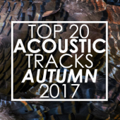 Top 20 Acoustic Tracks Fall 2017 (Instrumental)