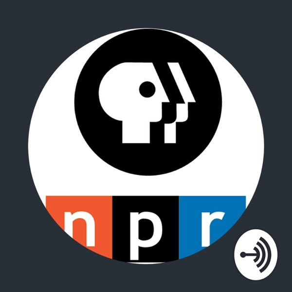 Public Media Fans: The Podcast